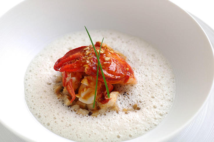 Lobster ragout with Porcini mushroom risotto truffle emulsion source